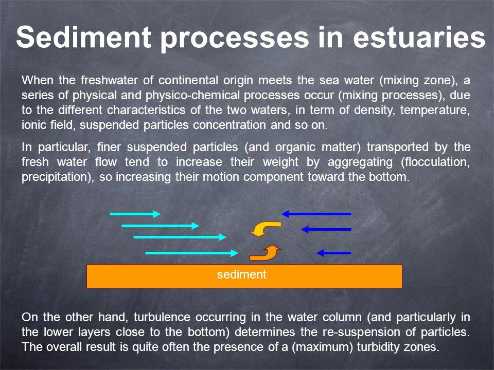 Sediment processes in estuaries