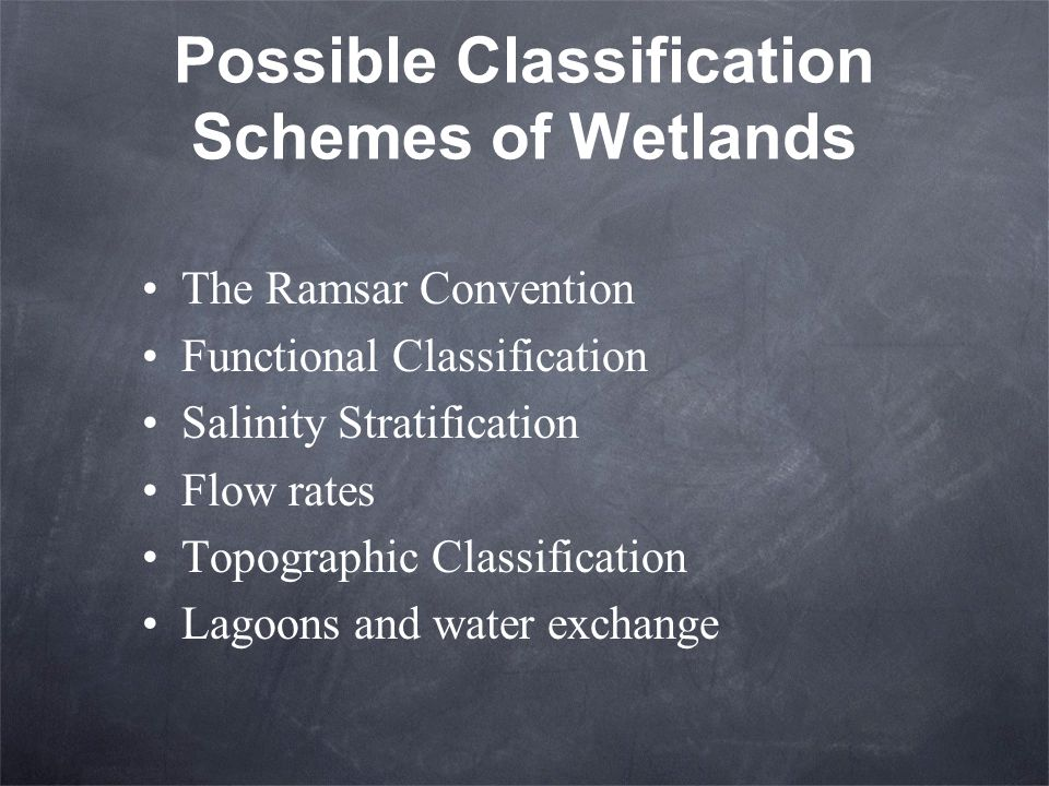 Possible Classification Schemes of Wetlands