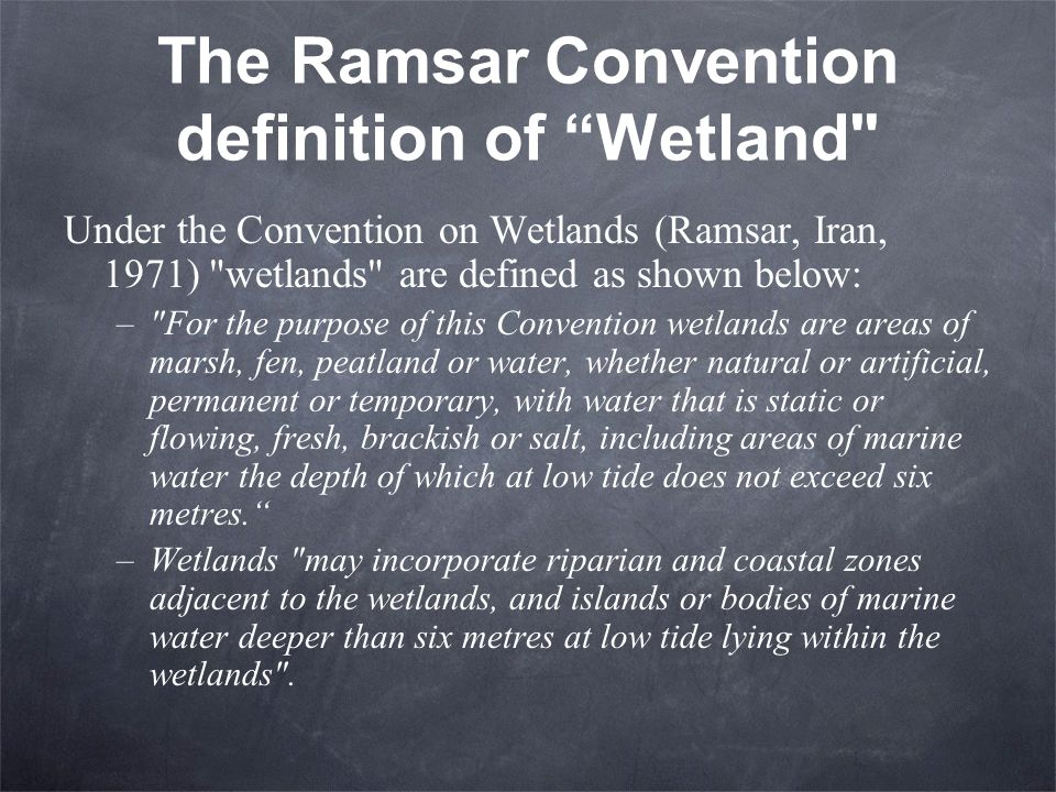 The Ramsar Convention definition of Wetland