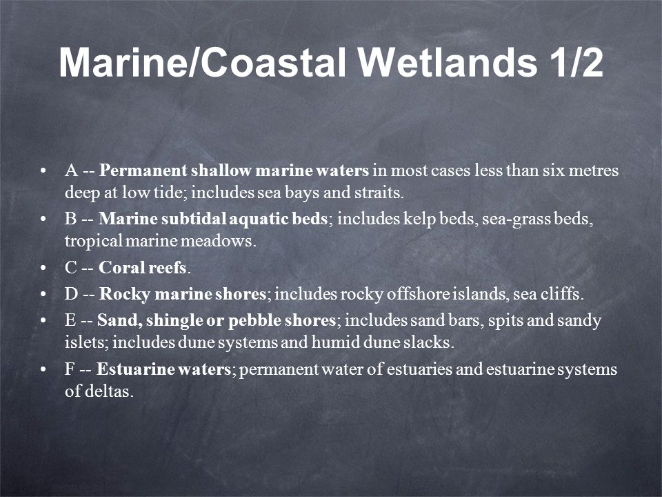 Marine/Coastal Wetlands 1/2