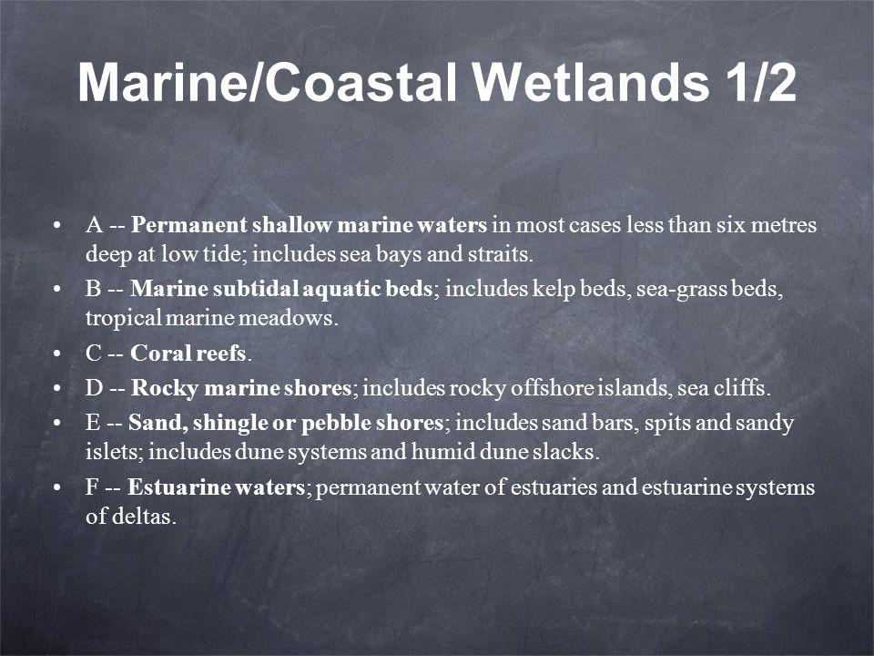 Marine/Coastal Wetlands 1/2