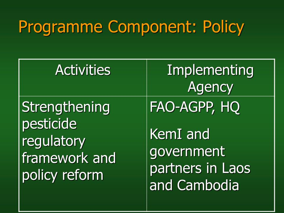 Programme Component: Policy