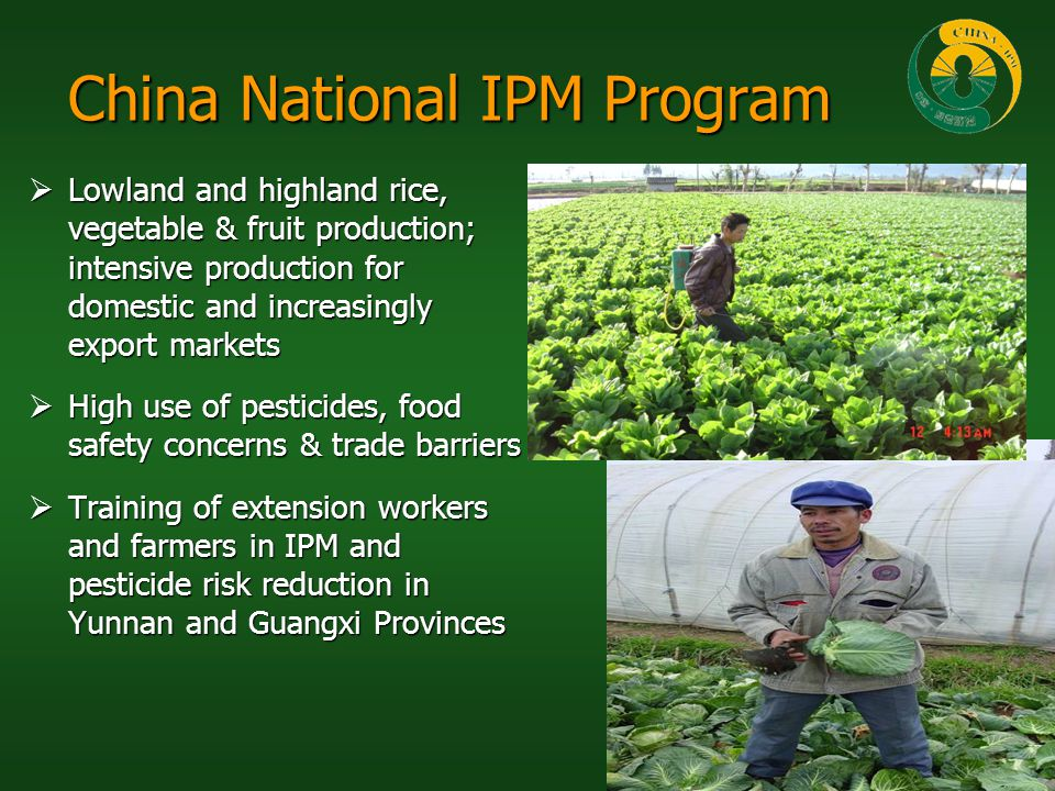 China National IPM Program