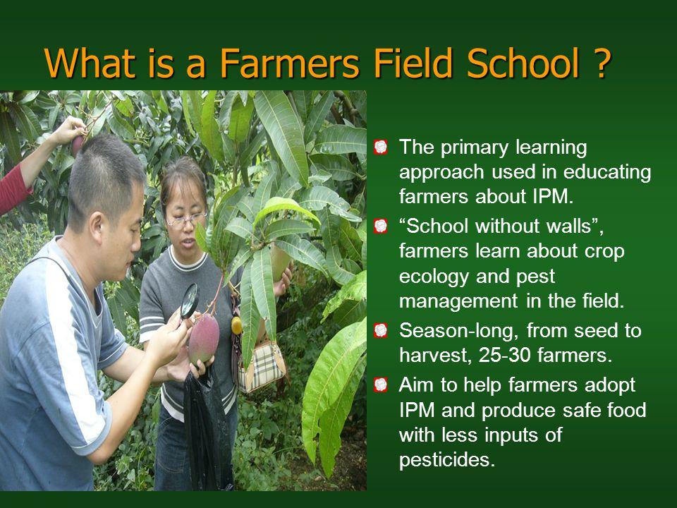 What is a Farmers Field School