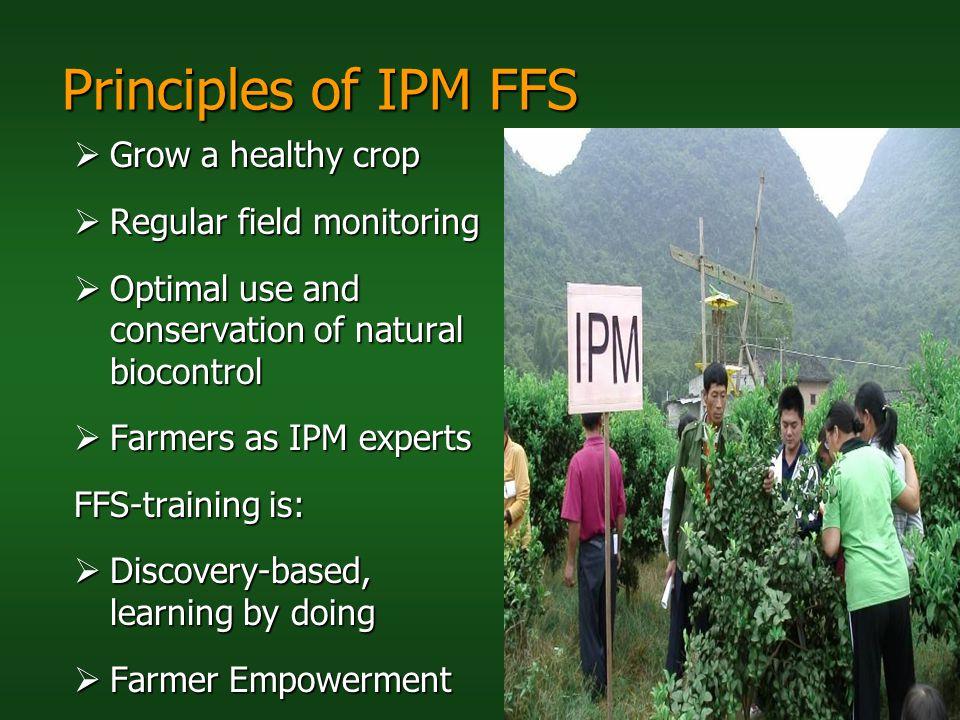 Principles of IPM FFS Grow a healthy crop Regular field monitoring