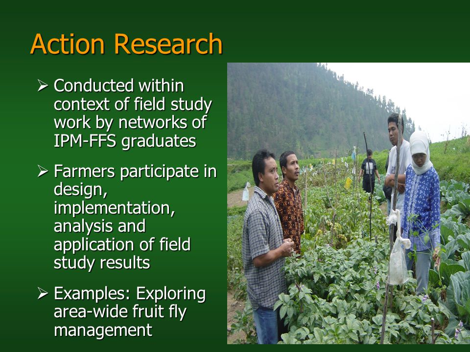 Action Research Conducted within context of field study work by networks of IPM-FFS graduates.