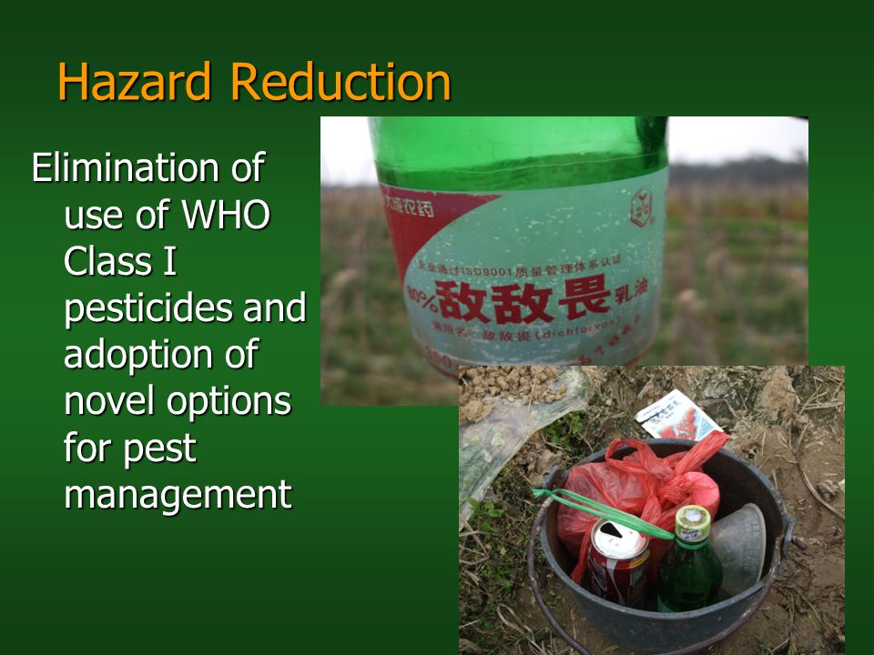 Hazard Reduction Elimination of use of WHO Class I pesticides and adoption of novel options for pest management.