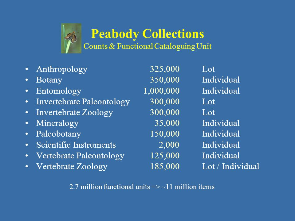 Peabody Collections Counts & Functional Cataloguing Unit