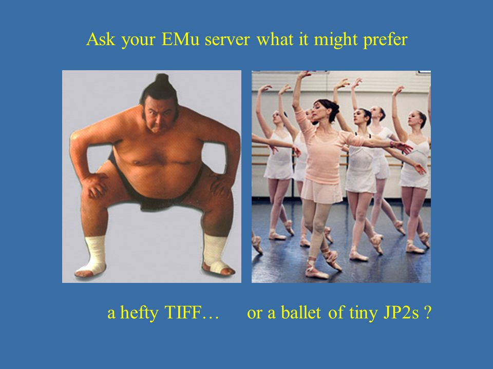 JP2 – size matters Ask your EMu server what it might prefer