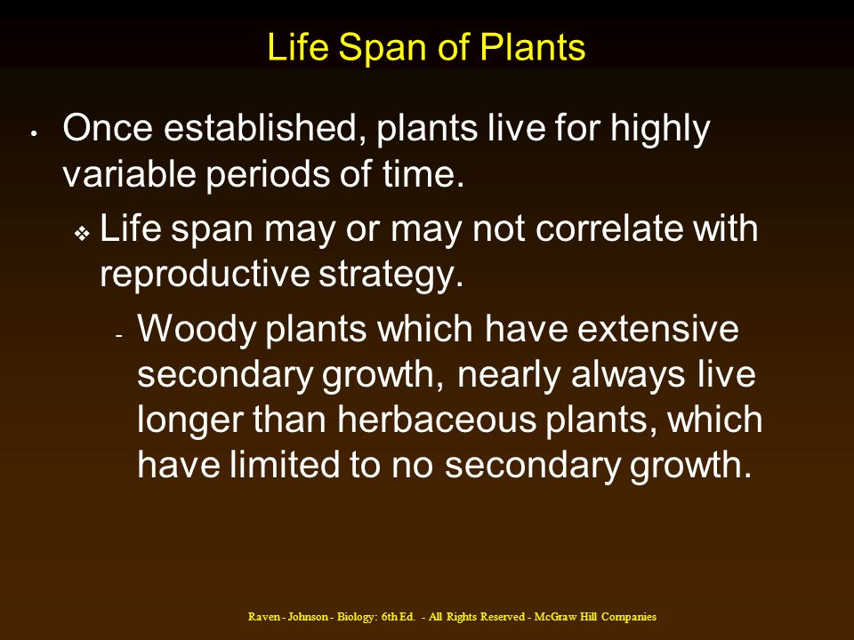 Once established, plants live for highly variable periods of time.