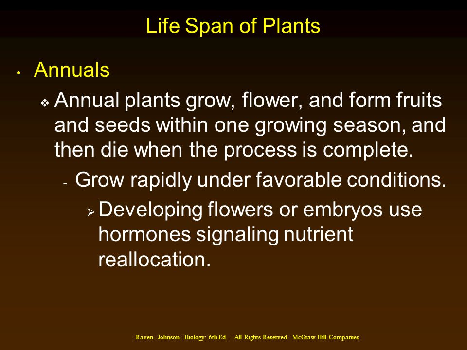 Grow rapidly under favorable conditions.
