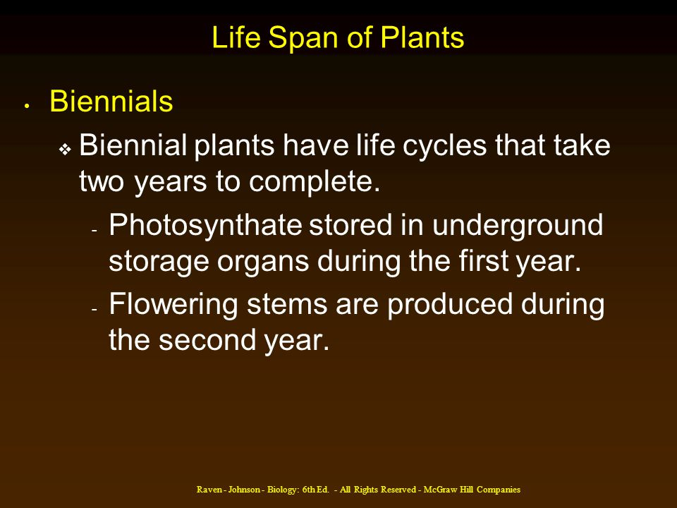 Biennial plants have life cycles that take two years to complete.