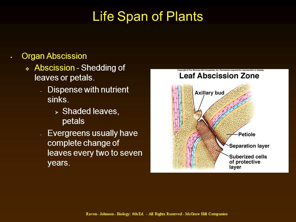 Life Span of Plants Organ Abscission