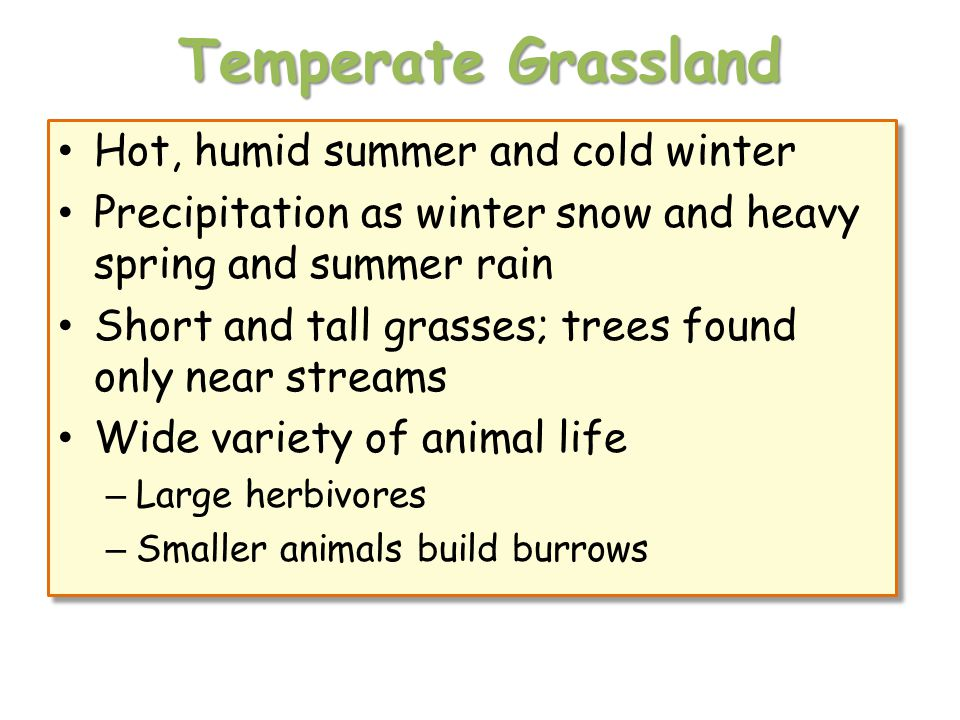 Temperate Grassland Hot, humid summer and cold winter