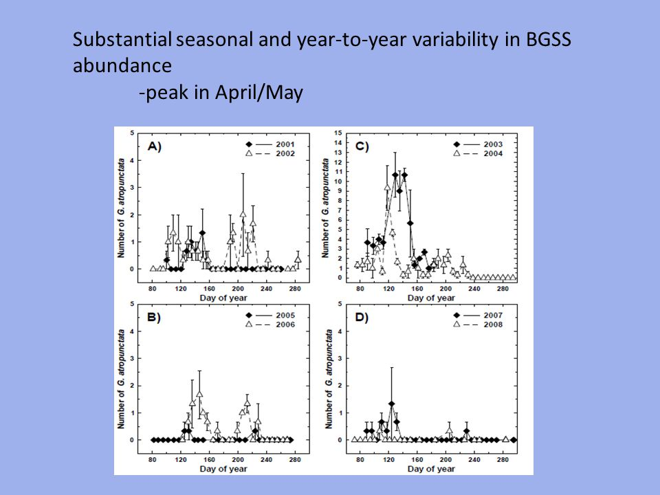 Substantial seasonal and year-to-year variability in BGSS abundance