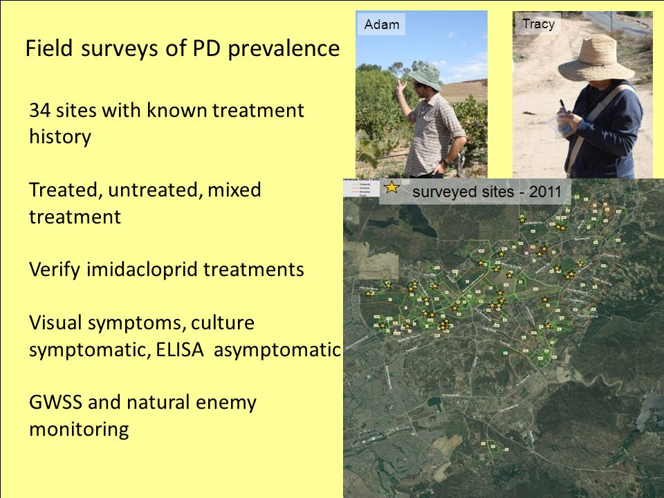Field surveys of PD prevalence