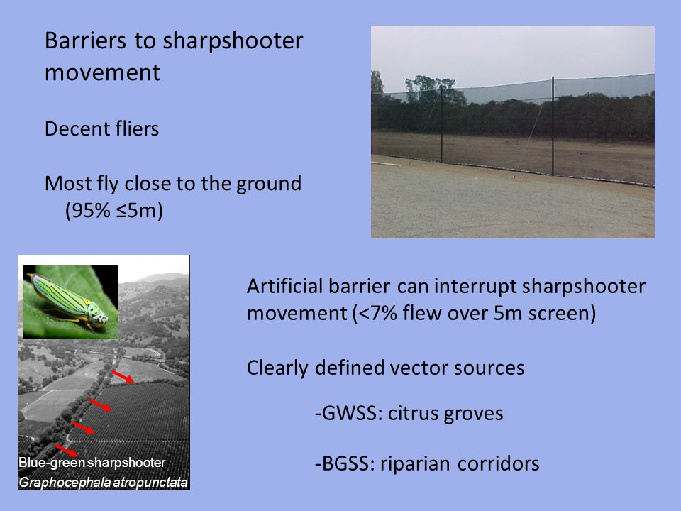 Barriers to sharpshooter movement