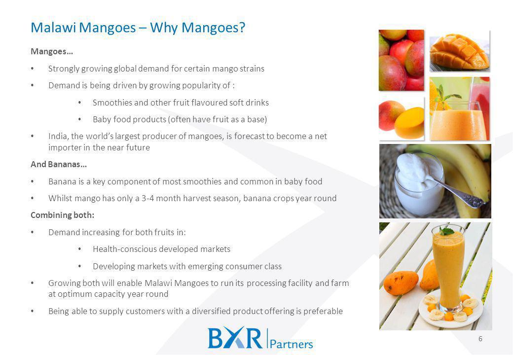 Malawi Mangoes – Why Mangoes