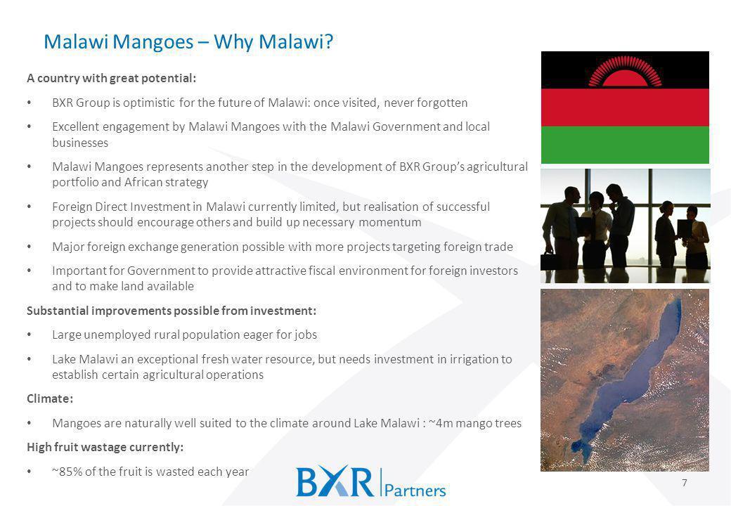 Malawi Mangoes – Why Malawi