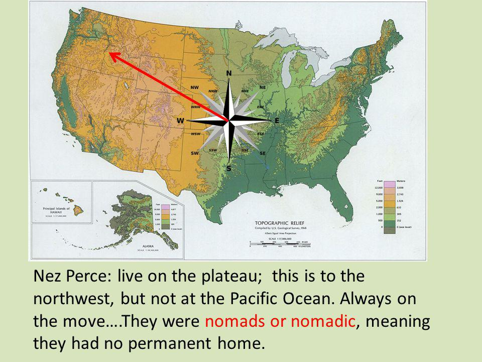 Nez Perce: live on the plateau; this is to the northwest, but not at the Pacific Ocean.