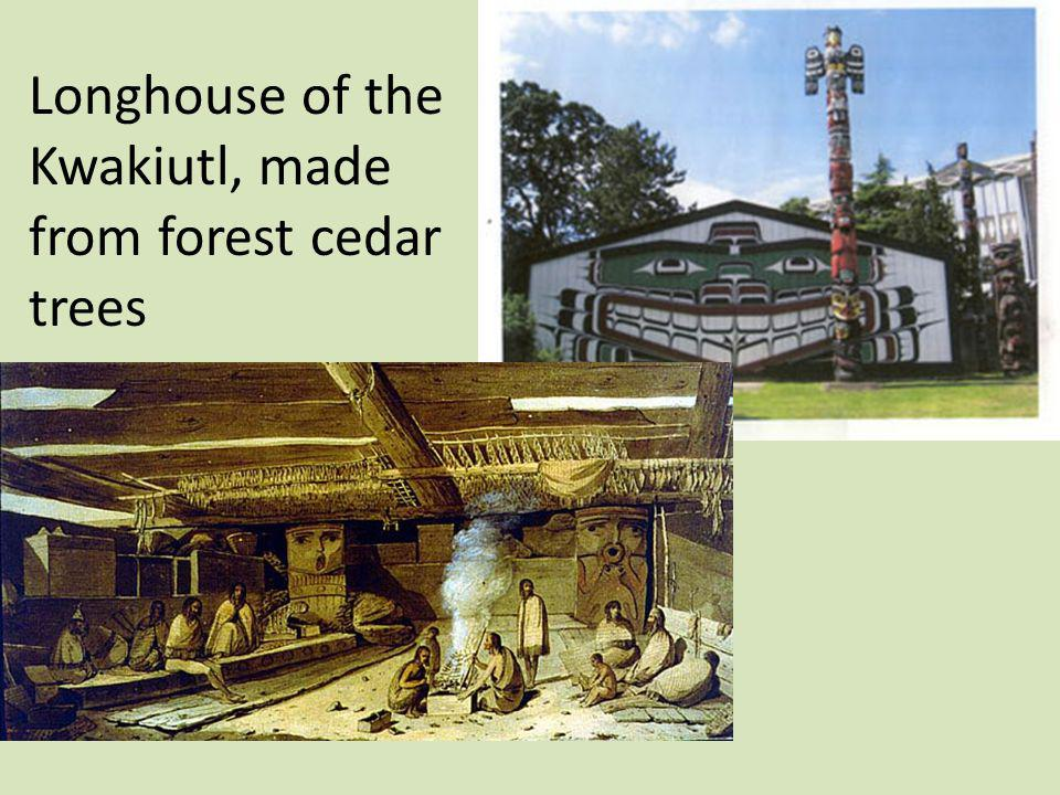 Longhouse of the Kwakiutl, made from forest cedar trees