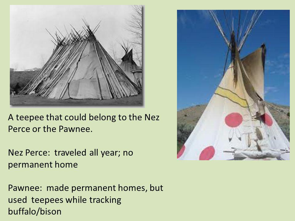 A teepee that could belong to the Nez Perce or the Pawnee.