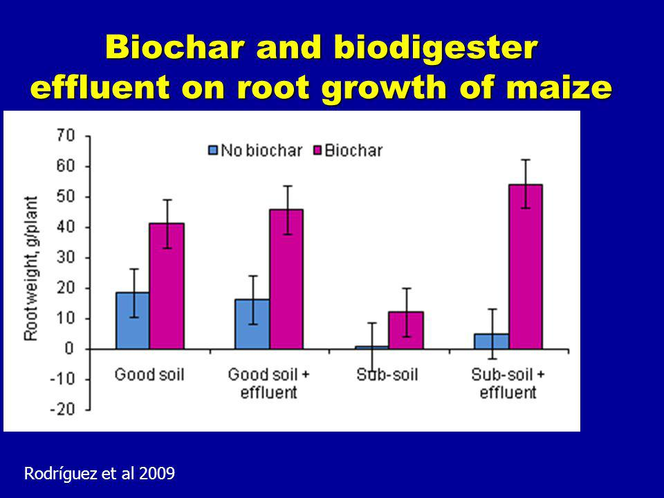 Biochar and biodigester effluent on root growth of maize