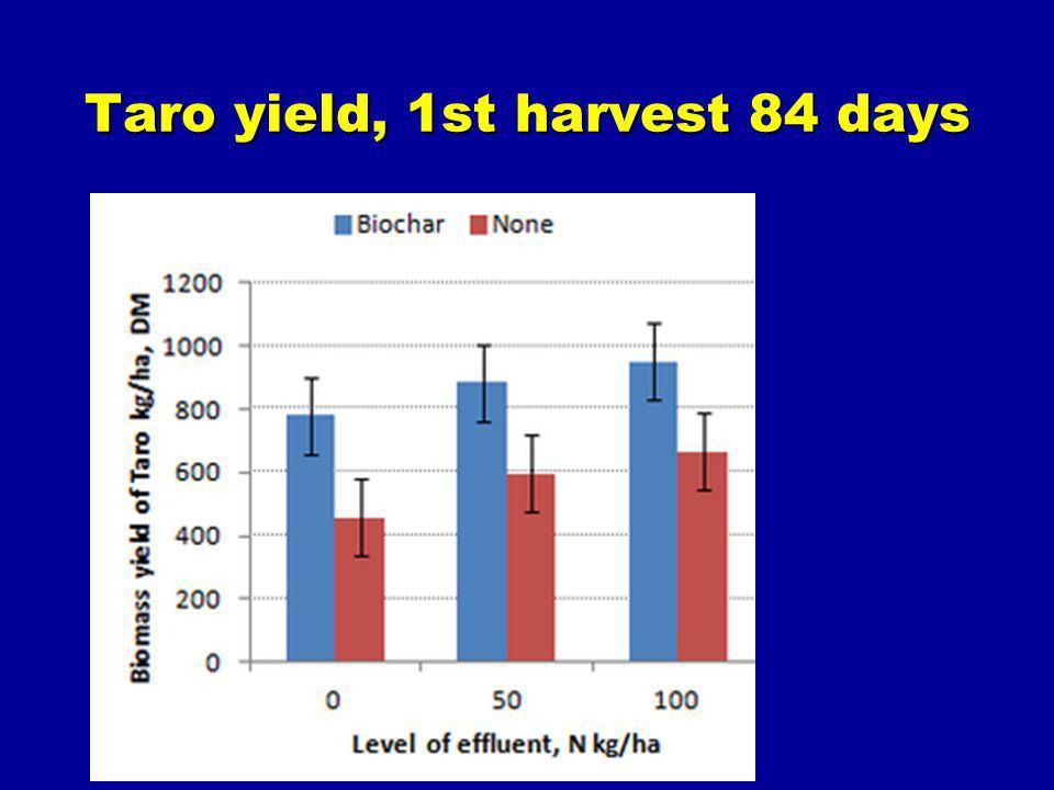 Taro yield, 1st harvest 84 days
