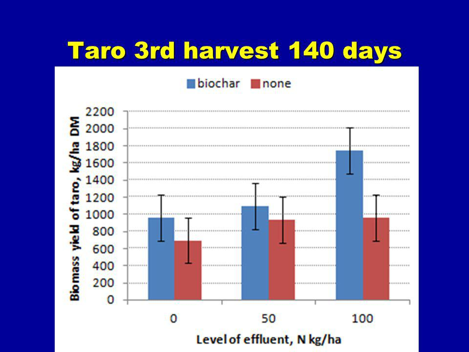Taro 3rd harvest 140 days
