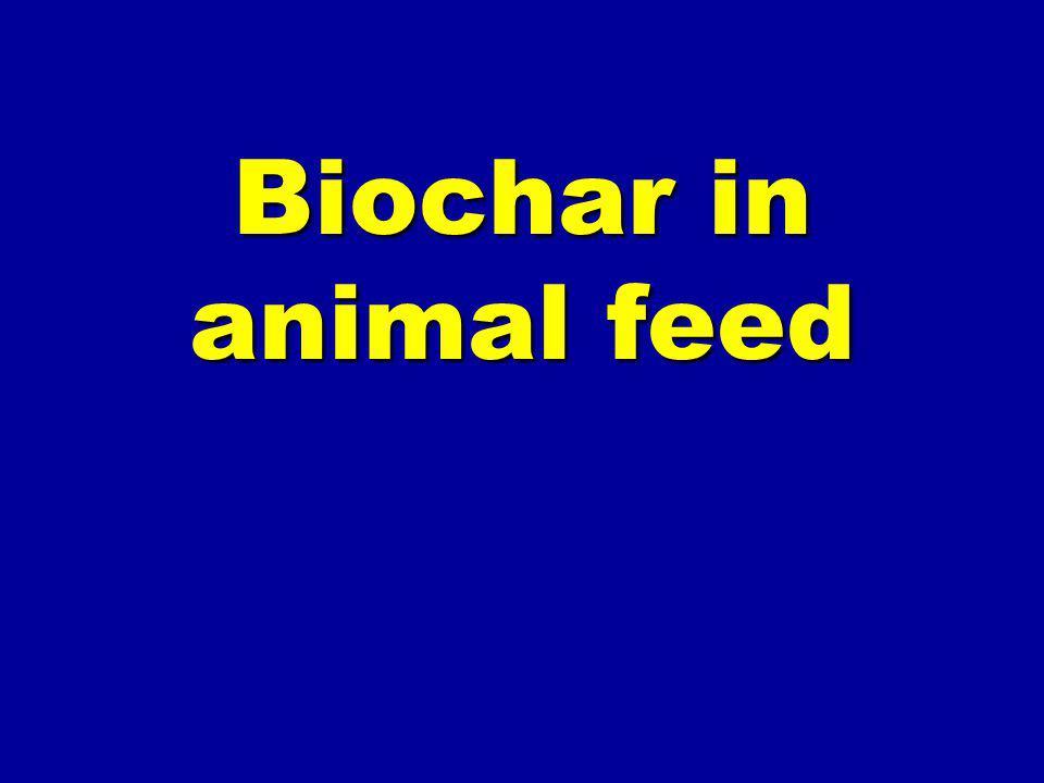 Biochar in animal feed