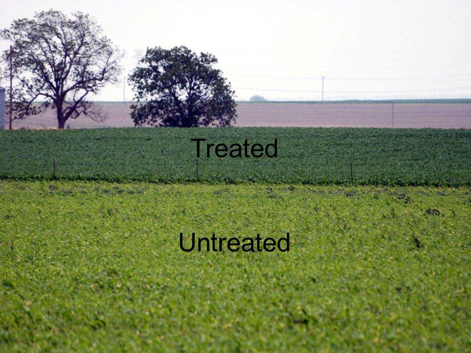 Treated Untreated