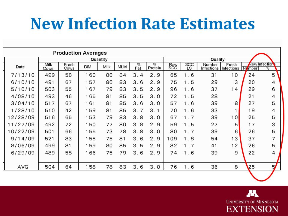 New Infection Rate Estimates