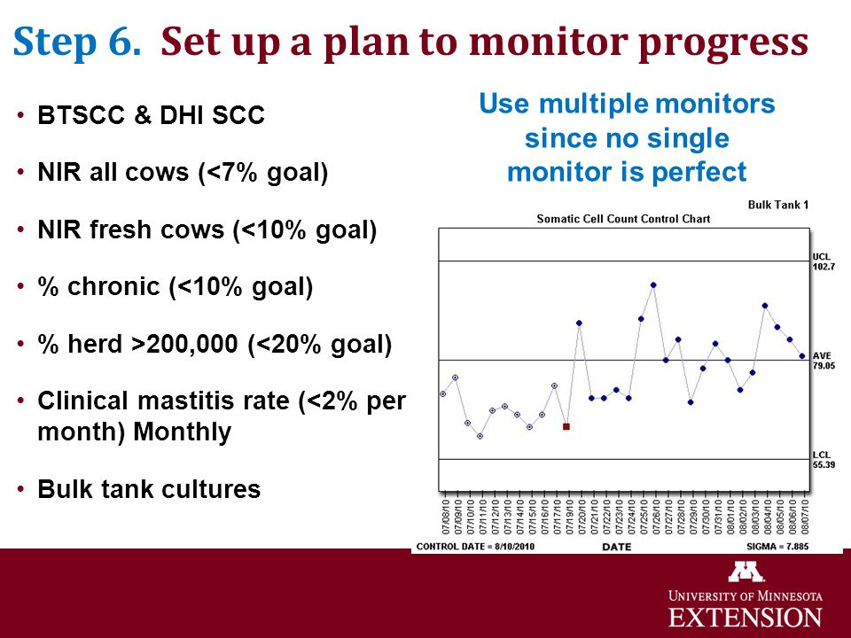 Step 6. Set up a plan to monitor progress