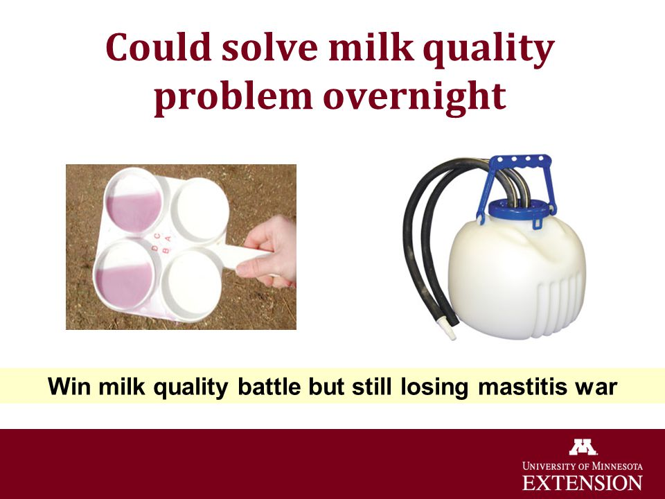 Could solve milk quality problem overnight