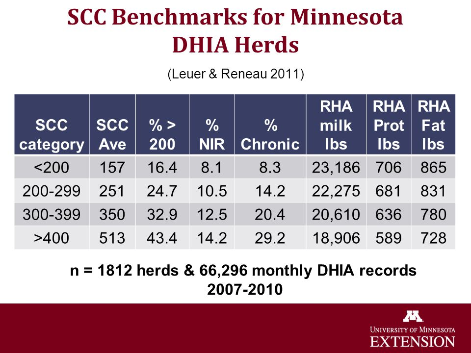 SCC Benchmarks for Minnesota DHIA Herds (Leuer & Reneau 2011)