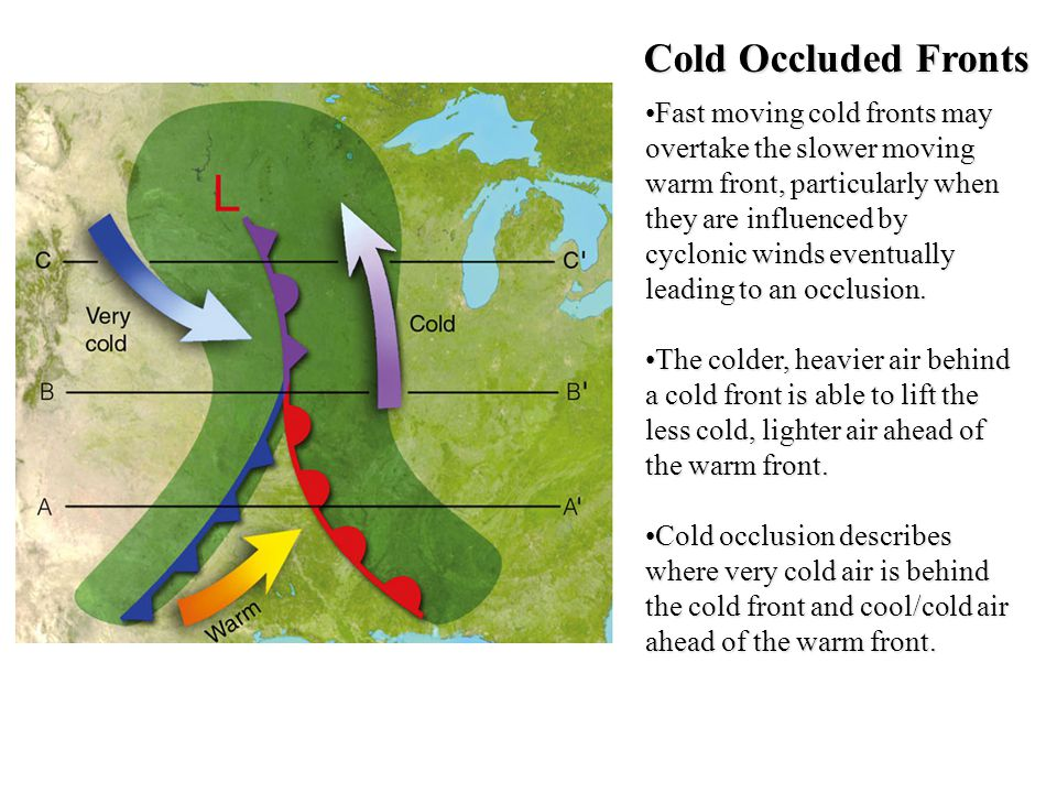 Cold Occluded Fronts