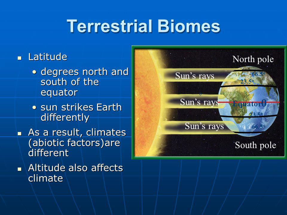 Terrestrial Biomes Latitude North pole