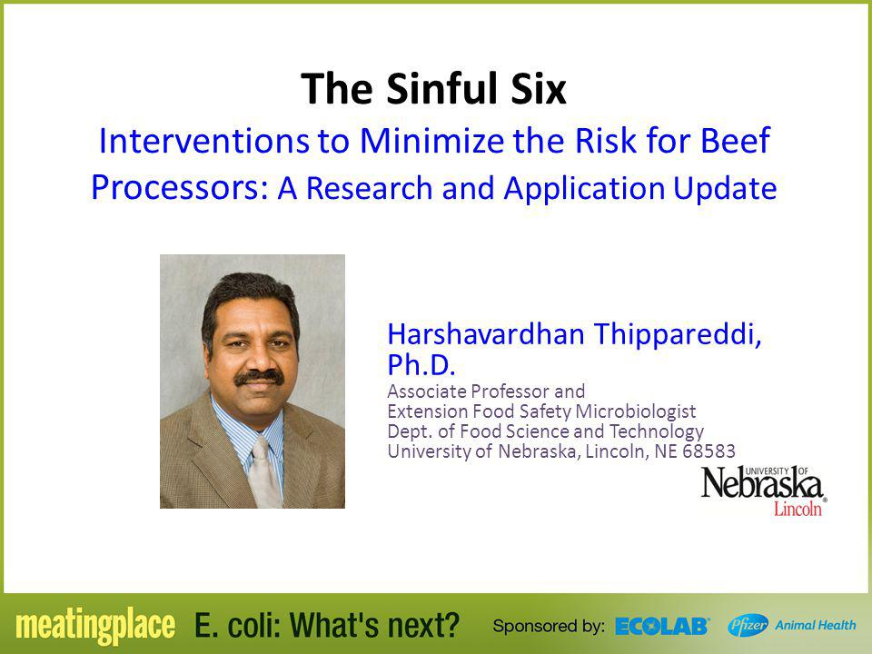 The Sinful Six Interventions to Minimize the Risk for Beef Processors: A Research and Application Update