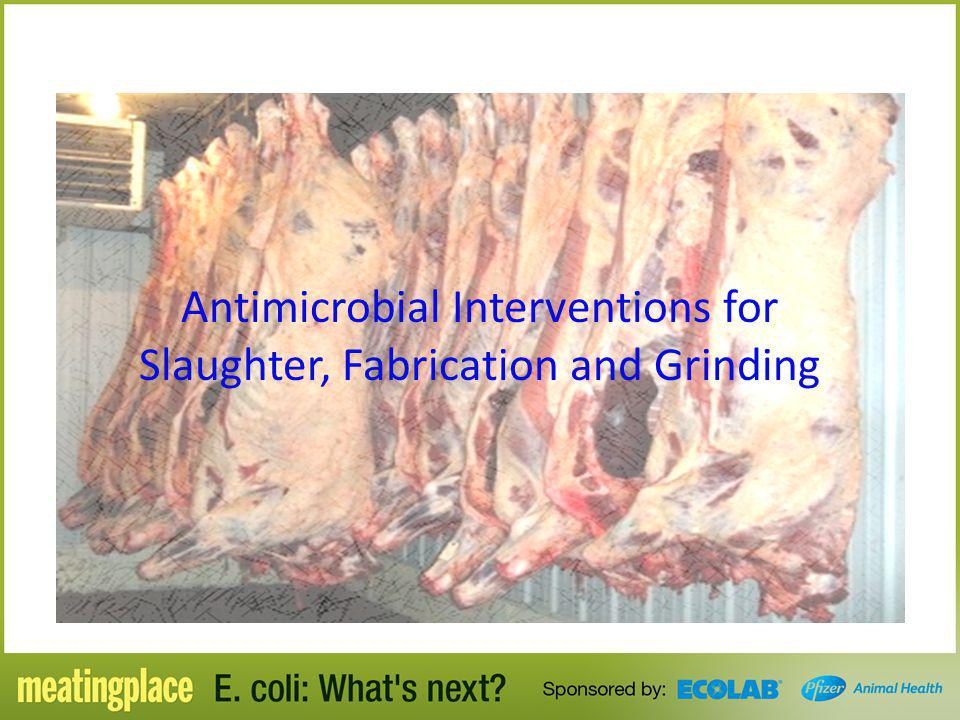 Antimicrobial Interventions for Slaughter, Fabrication and Grinding