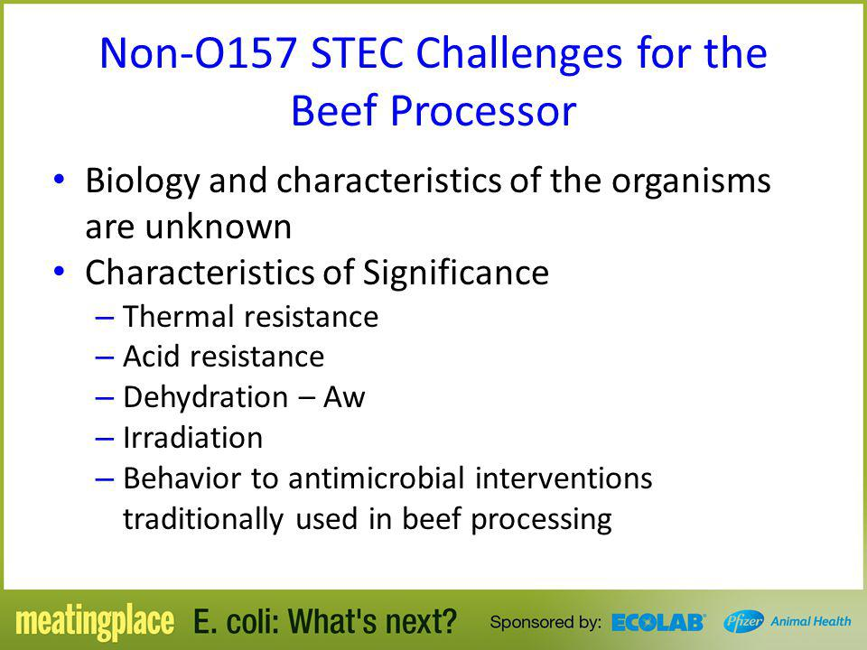 Non-O157 STEC Challenges for the Beef Processor
