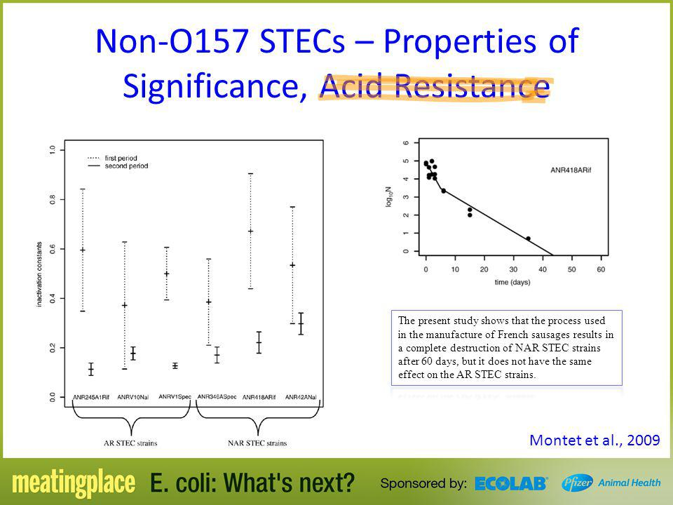 Non-O157 STECs – Properties of Significance, Acid Resistance
