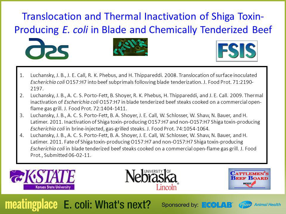 Translocation and Thermal Inactivation of Shiga Toxin-Producing E