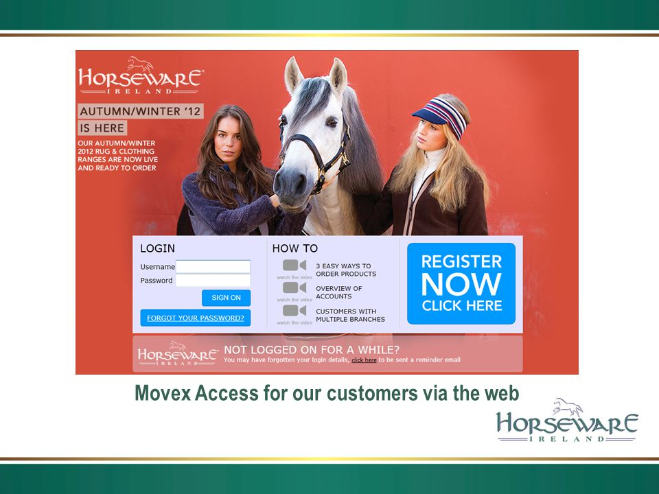 Movex Access for our customers via the web