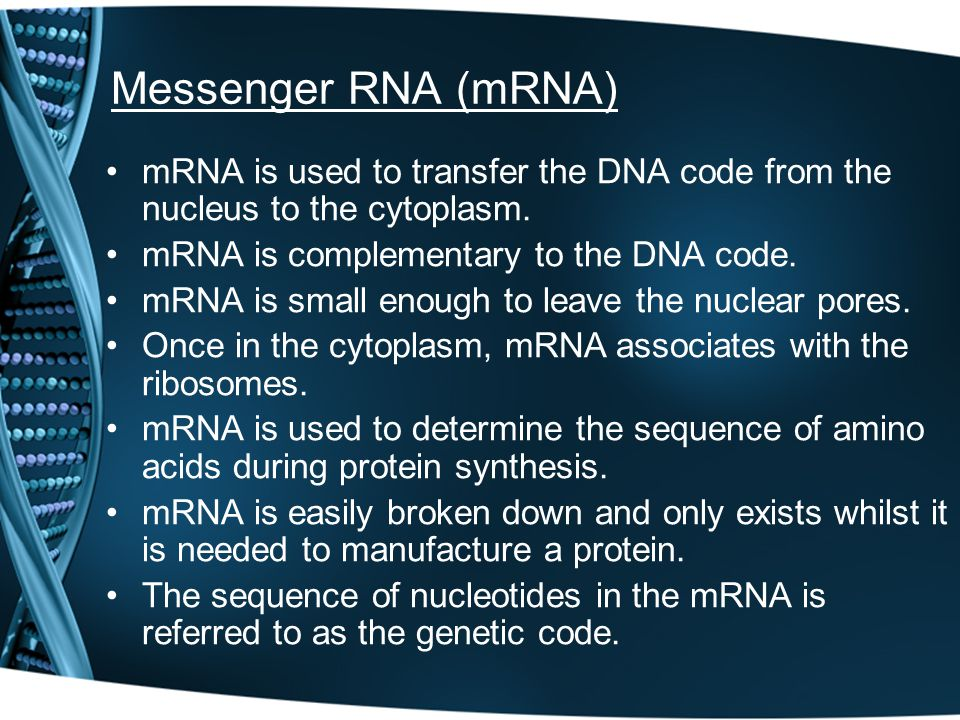 Messenger RNA (mRNA) mRNA is used to transfer the DNA code from the nucleus to the cytoplasm. mRNA is complementary to the DNA code.