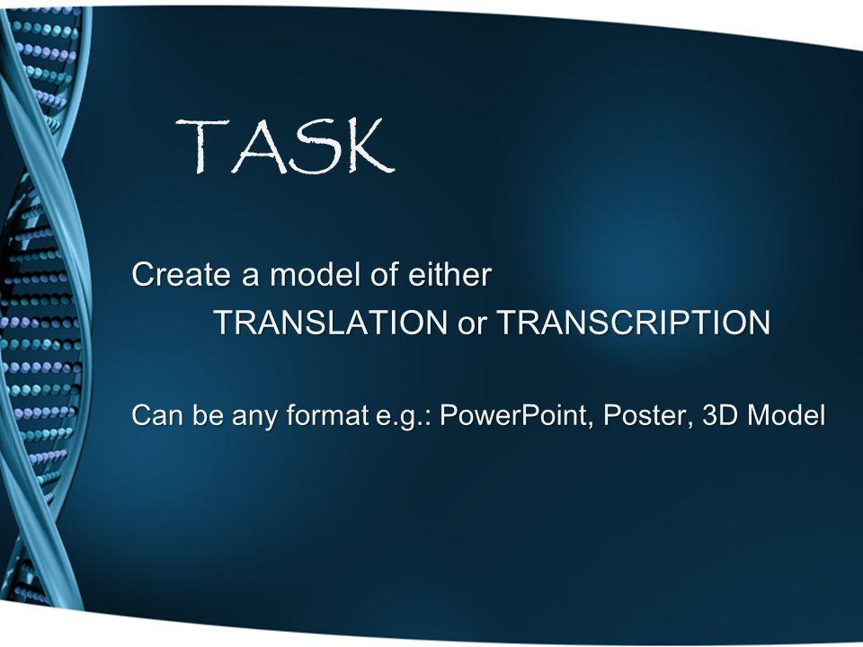 TRANSLATION or TRANSCRIPTION