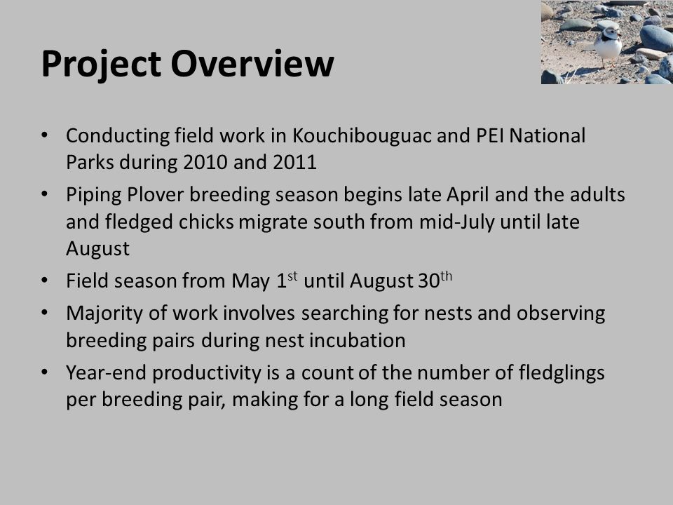 Project Overview Conducting field work in Kouchibouguac and PEI National Parks during 2010 and 2011.