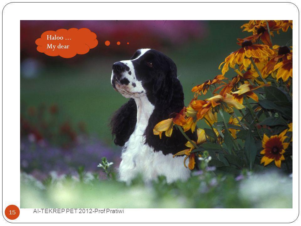 Fantasizing… Haloo ... My dear AI-TEKREP PET 2012-Prof Pratiwi
