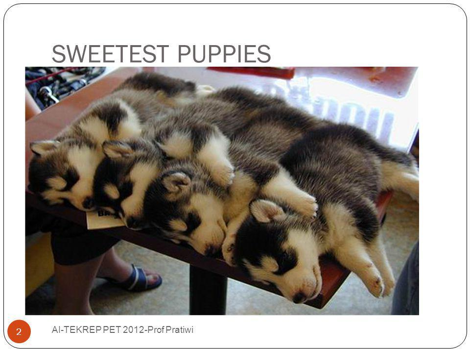 SWEETEST PUPPIES AI-TEKREP PET 2012-Prof Pratiwi