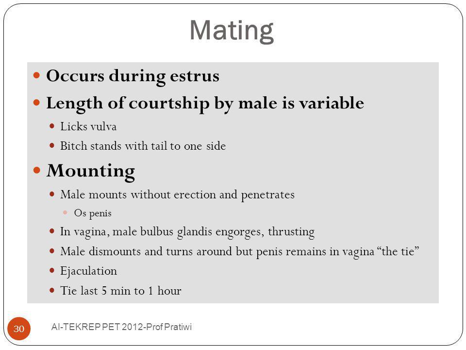 Mating Mounting Occurs during estrus
