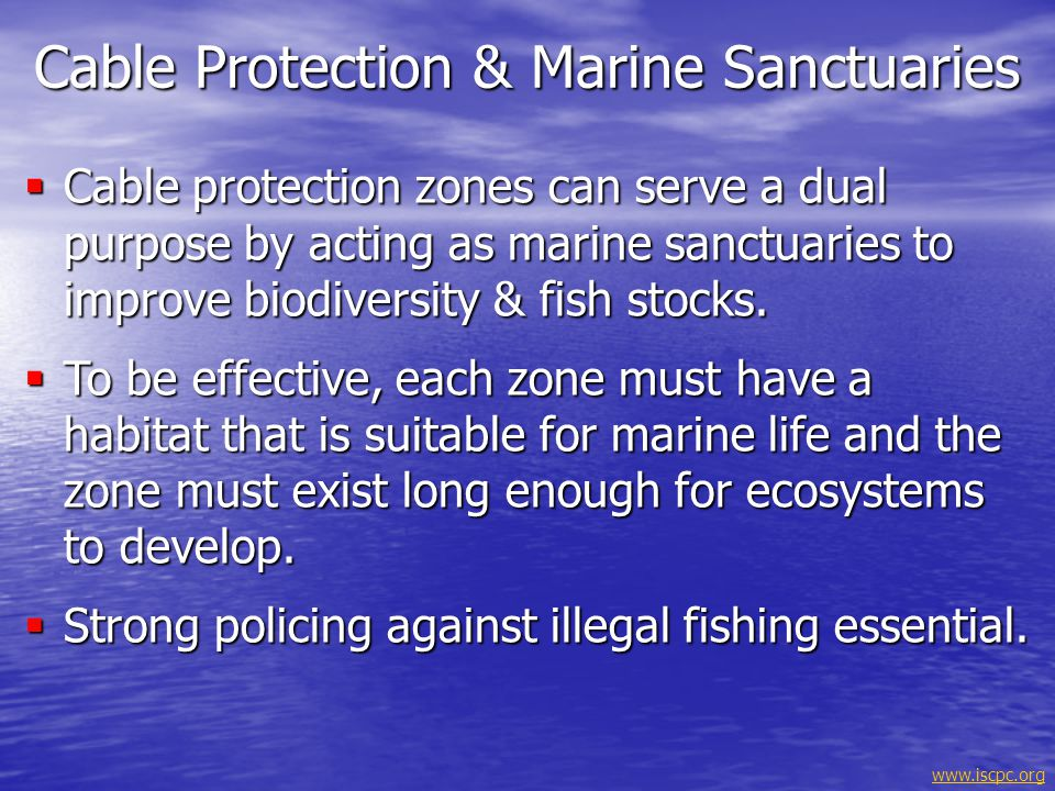 Cable Protection & Marine Sanctuaries